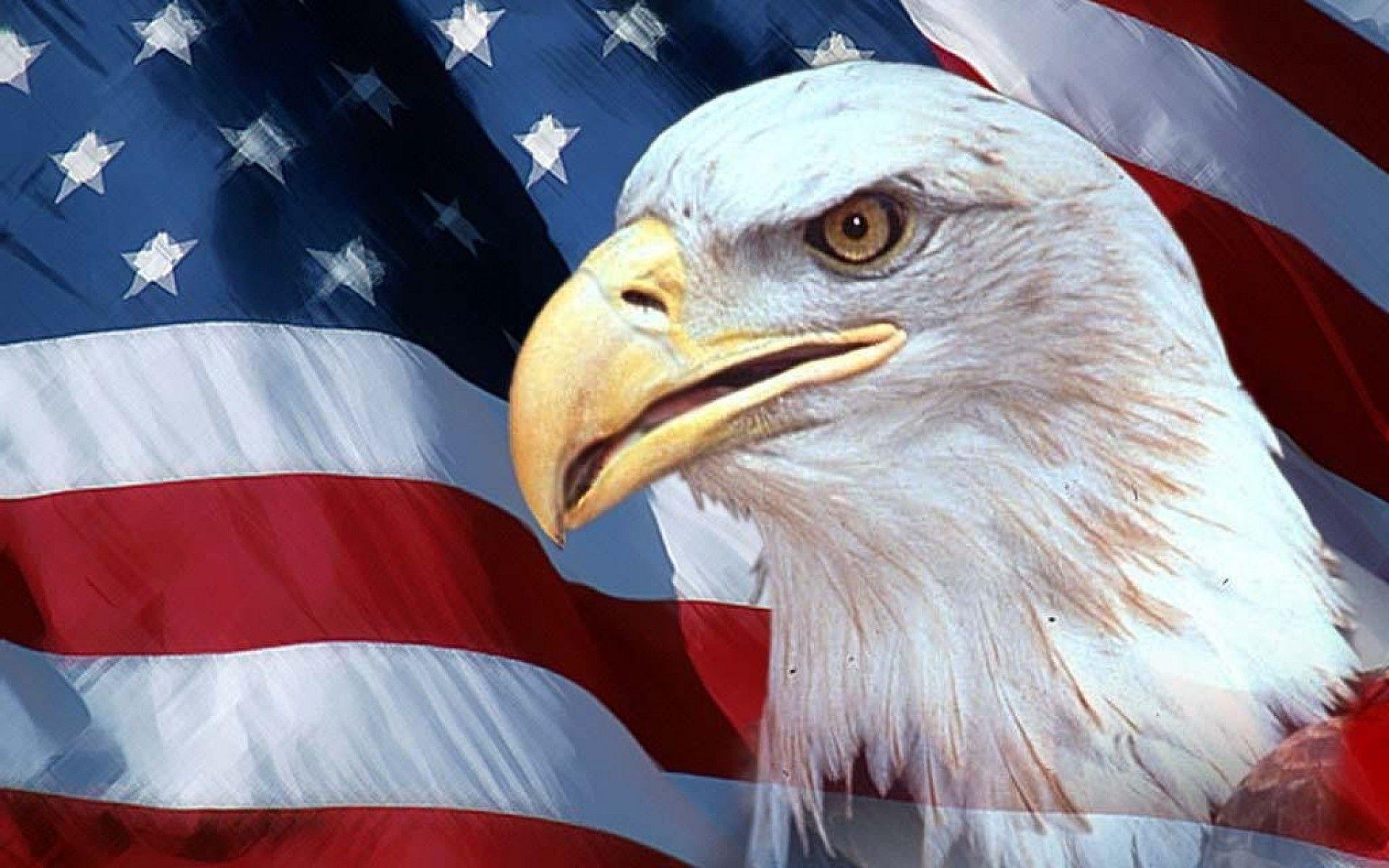 Hdscreen Bandera Americana Ee Uu Pajaros Aguilas Banderas
