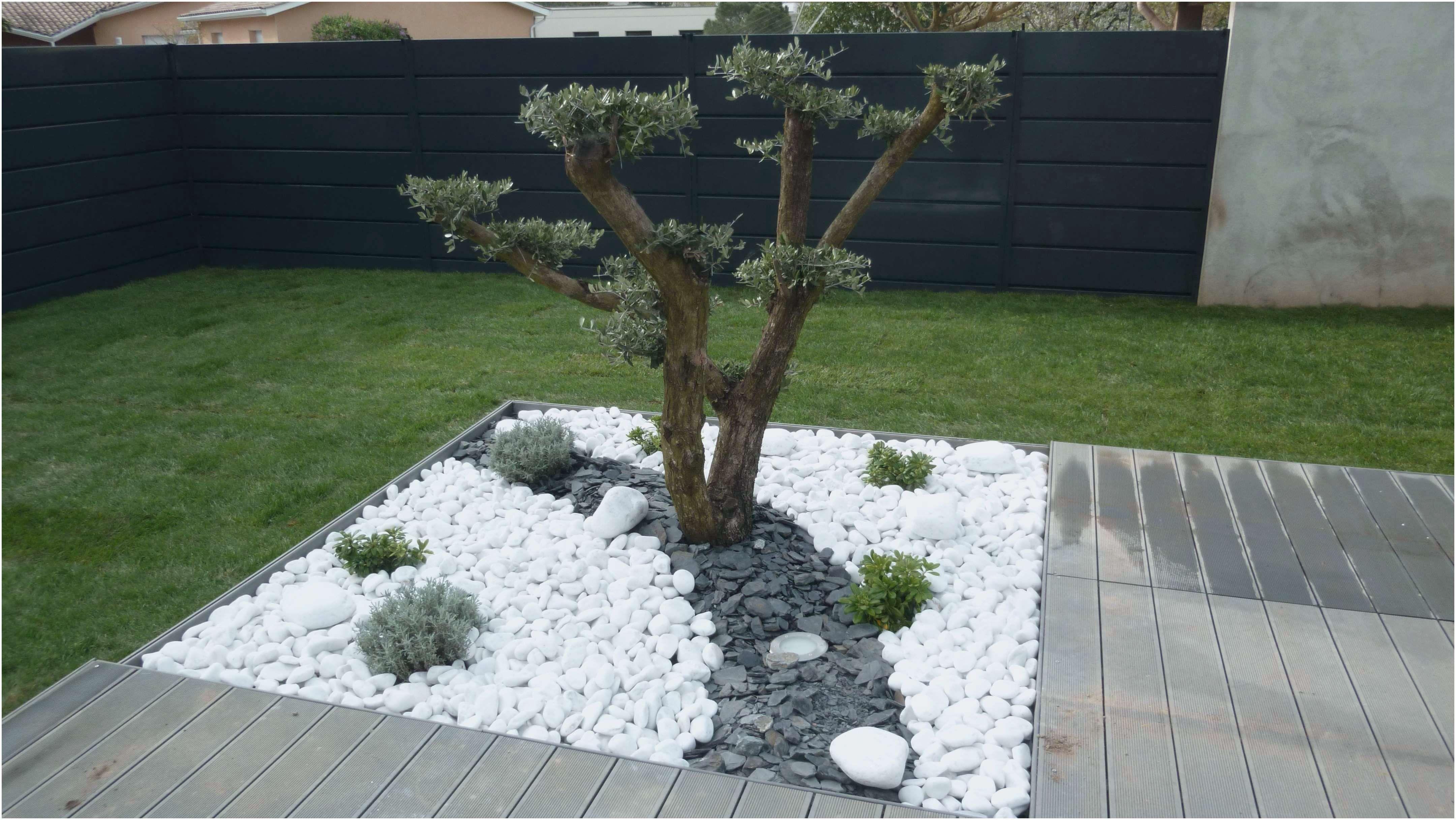Idee Deco Jardin Avec Gravillon Decoration Jardin Deco Jardin