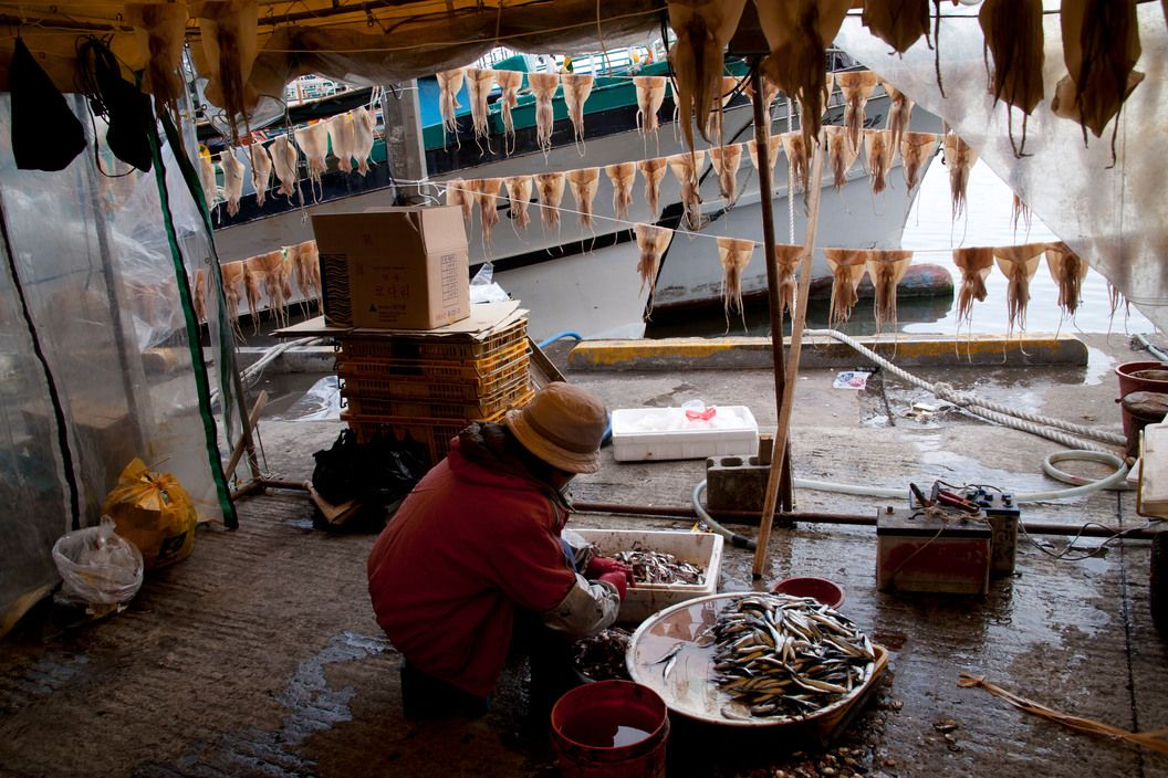 South KOREA. South-east coast. Fish market at DAEBUN harbour.