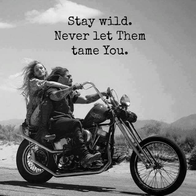 15 Twitter Biker Quotes Biker Love Biker Quotes Inspiration