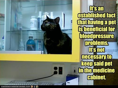 It's an established fact that having a pet is beneficial for bloodpressure problems. It's not necessary to keep said pet in the medicine cabinet. - Cheezburger