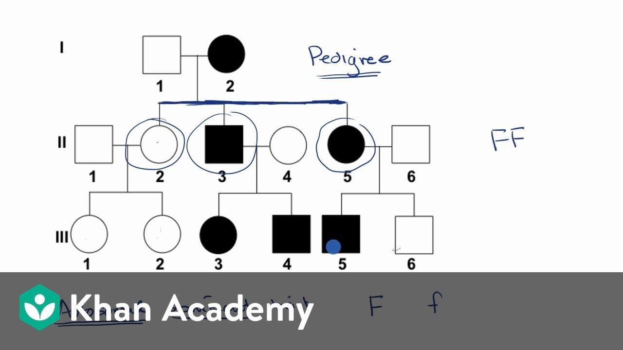 Pin On School Kindergarten worksheets in khan academy