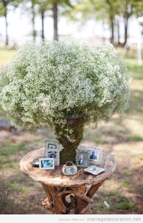idées déco mariage jardin vintage, portraits familiers | Baptême ...