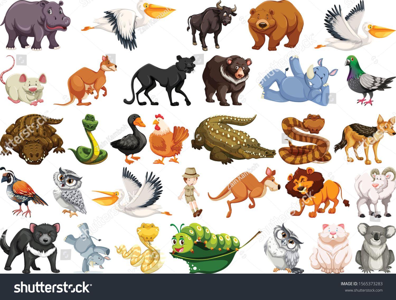 Set Of Wild Animals Sticker Image Vector Animals Wild Animal Stickers Animals