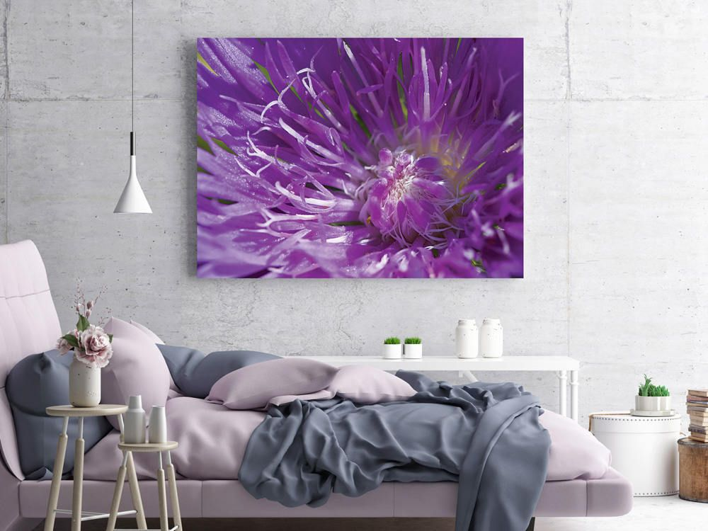 Flower Wall Art, Purple Flower Photo Print, Nature Wall Decor, Macro ...