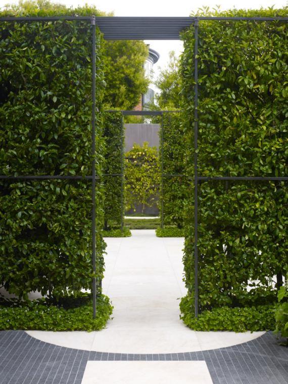 Modern Urban Garden In San Francisco Path Www My Garden School Com Courses Landscape Design Green Landscape Modern Garden