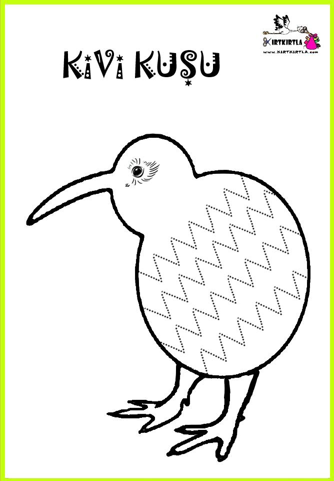 Okul öncesi Hayvan Boyama Sayfası örnekleri Kivi Kuşu Bu