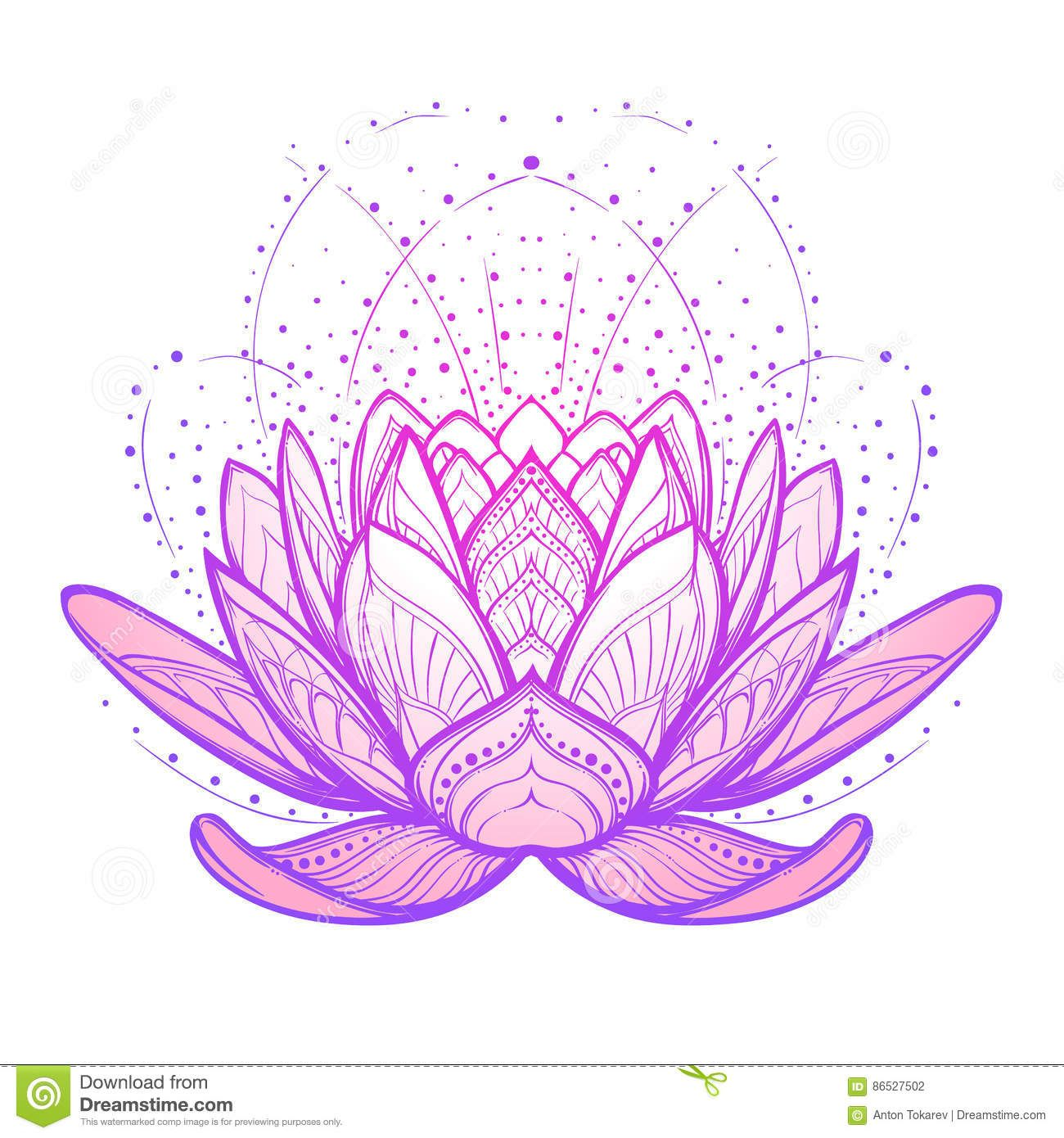 Pin by Ashley Bahr on Tattoo ideas Lotus flower drawing