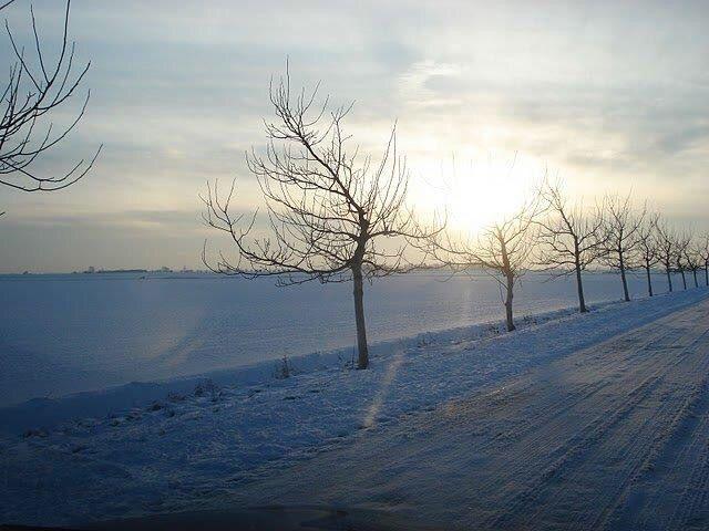 Winter in de Hoeksche Waard