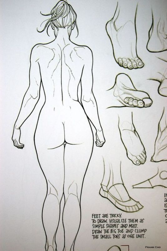 Enjoy A Collection Of References For Character Design Female