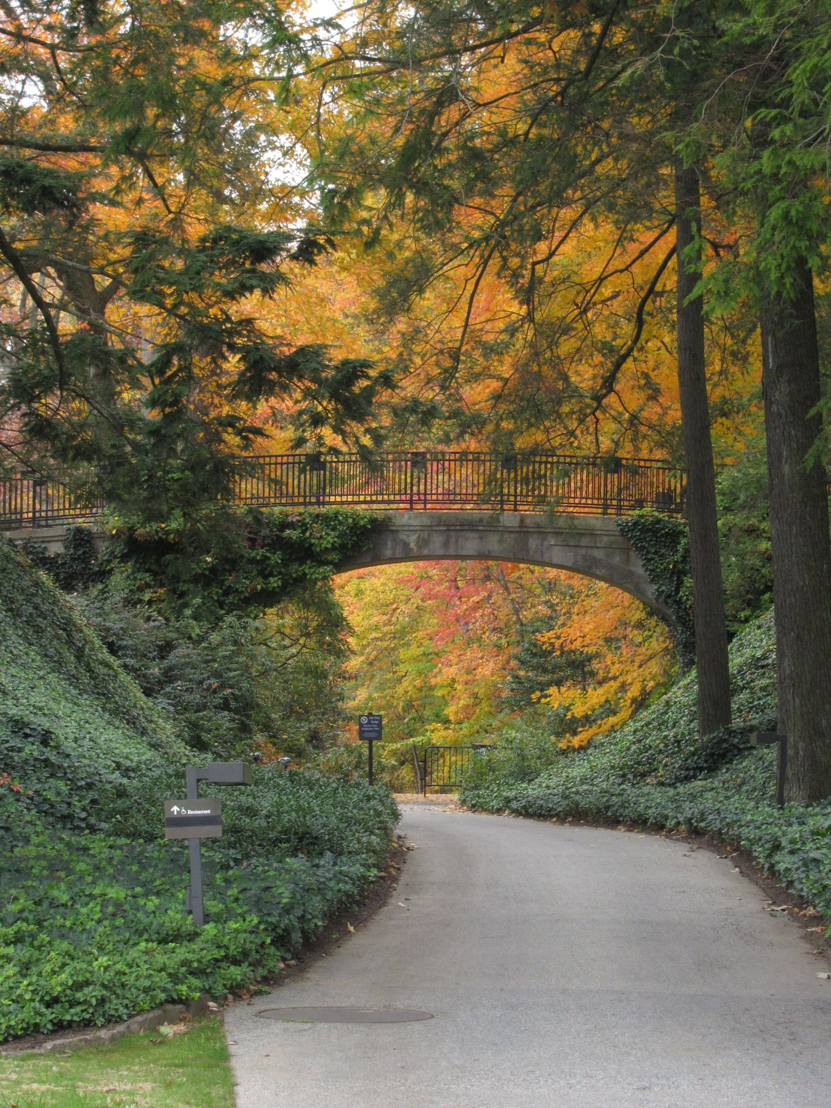 An Afternoon in Longwood Gardens #landscapephoto