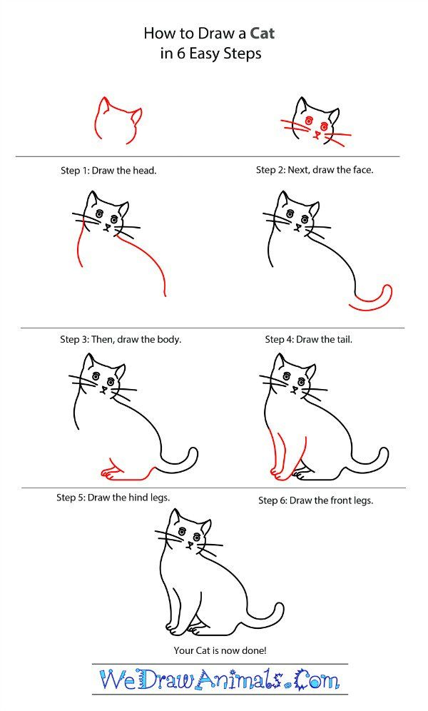 Learn To Draw A Cat Drawing Tutorial Dieren Tekenen Leer Tekenen Tekenen