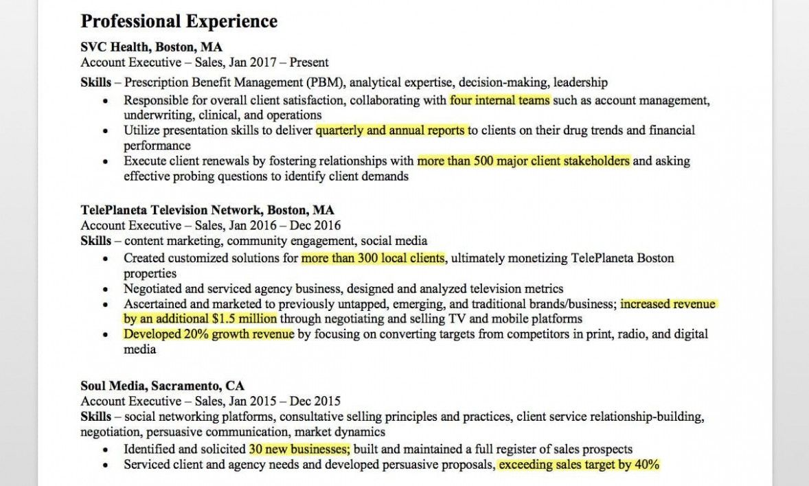 13 Account Government Resume Format Phrase 13 Account