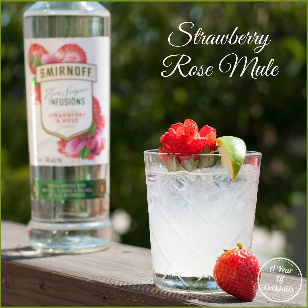 If you enjoy a good ginger beer cocktail, you will love this one!  It's light and refreshing and perfect on these warm days we've been having!  #smirnoff #vodka #strawberry #rose #nosugar #alcohol #cocktail #cocktails #new #yum #ginger #gingerbeer #lime #vodkastrawberries If you enjoy a good ginger beer cocktail, you will love this one!  It's light and refreshing and perfect on these warm days we've been having!  #smirnoff #vodka #strawberry #rose #nosugar #alcohol #cocktail #cocktails #new #yum #vodkastrawberries