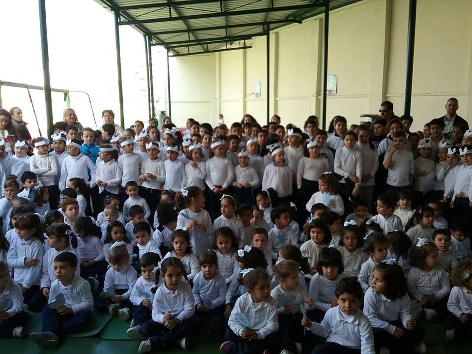 Día De La Paz Sistema Educativo Centro Educativo Dia De La Paz
