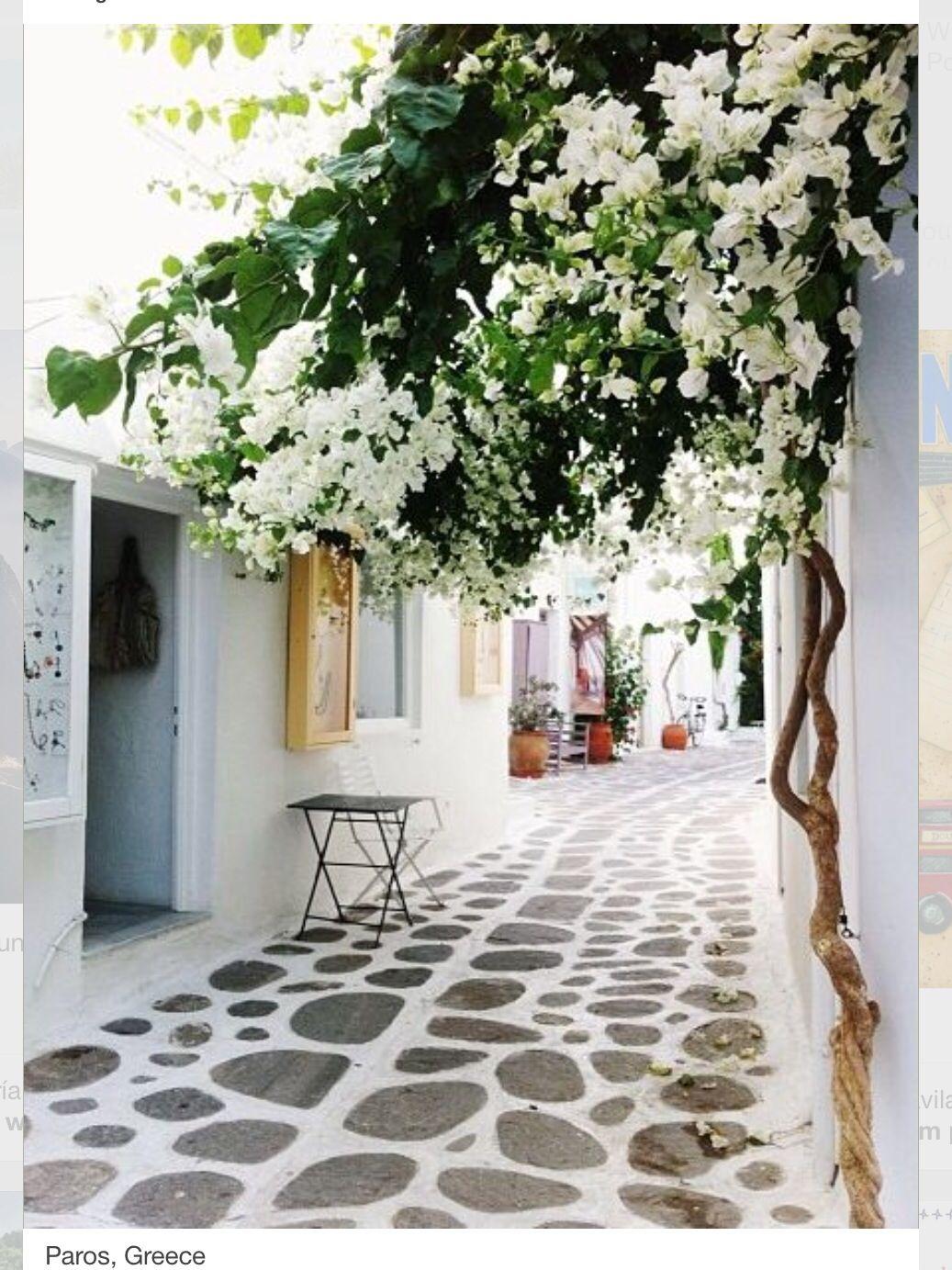 ...por acá...parece tranquilo y amistoso...Tan linda Grecia!