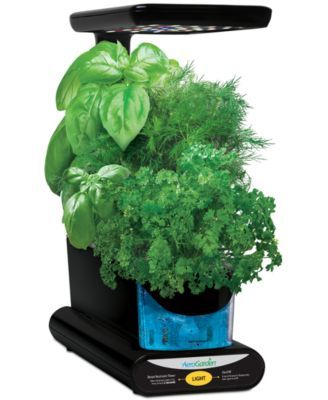 Sprout Led 3 Pod Smart Countertop Garden Herb Seeds 400 x 300