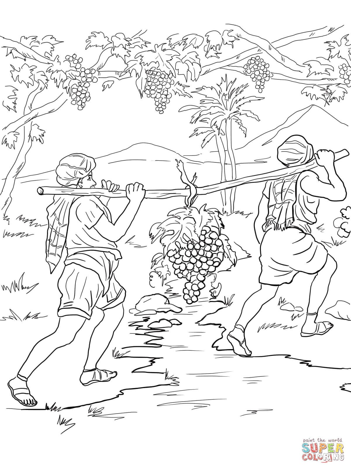 Joshua And Caleb Returning From Canaan Coloring Page From Joshua