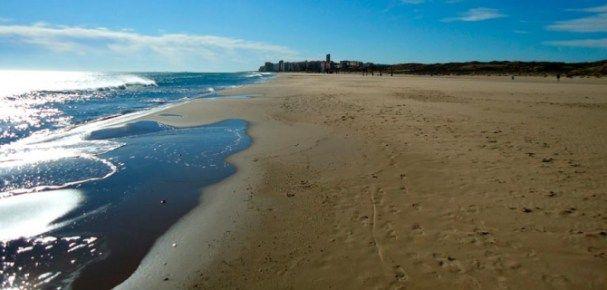 Playa El Altet,Elche, Alicante | Playas de España | Pinterest ...