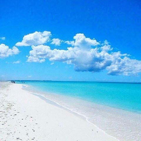 """""""Un lugar paradisiaco ubicado en nuestra hermosa Isla La Tortuga aquí en Venezuela!!! Que orgullo poder tener playas tan hermosas llenas de magia y azules…"""""""