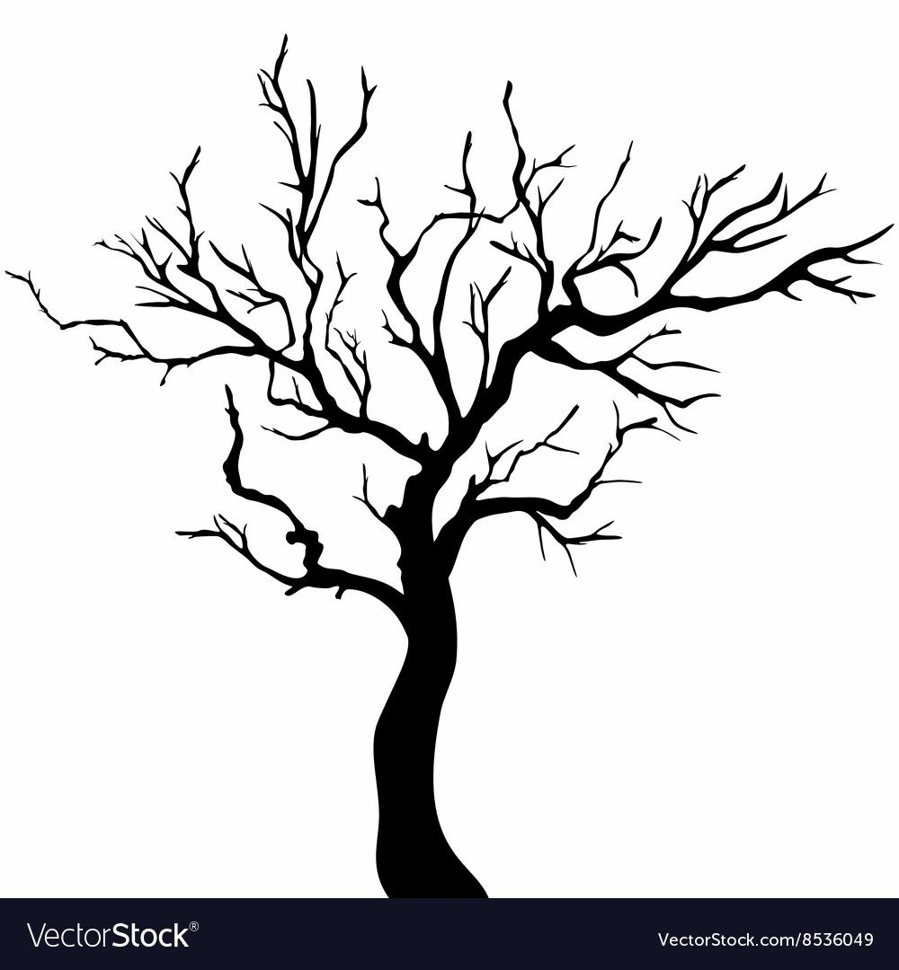 Vector Tree Silhouette Isolated On White Backgorund Download A Free Preview Or High Quality Adobe Illustrator Silhouette Drawing Tree Drawing Tree Silhouette