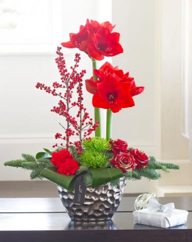 luxury christmas amaryllis and rose arrangement. Black Bedroom Furniture Sets. Home Design Ideas