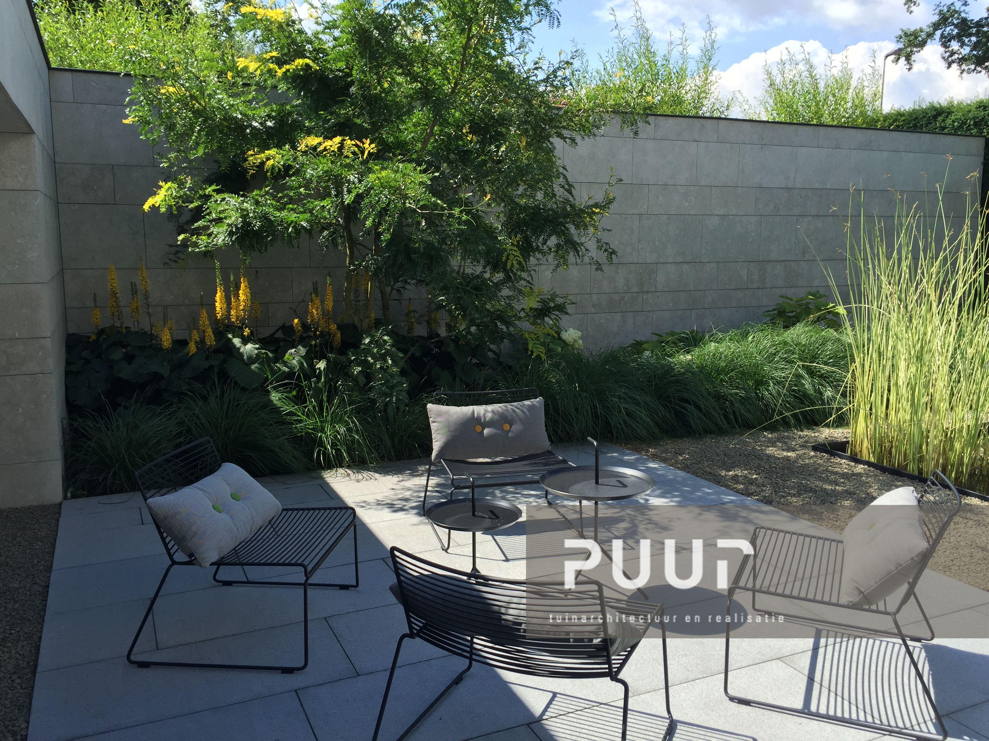 Moderne woning met unieke terraszone puur groenprojecten