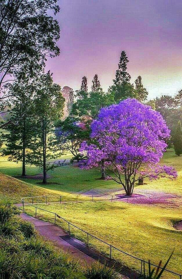 Pin By Anka Radikovic On Za Odmoriti Dusu Beautiful Nature Spring Scenery Landscape