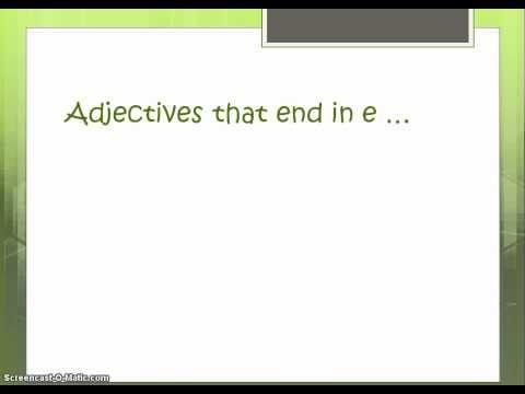 Noun Adjective Agreement Baehne Spanish 2 Classroom Ideas
