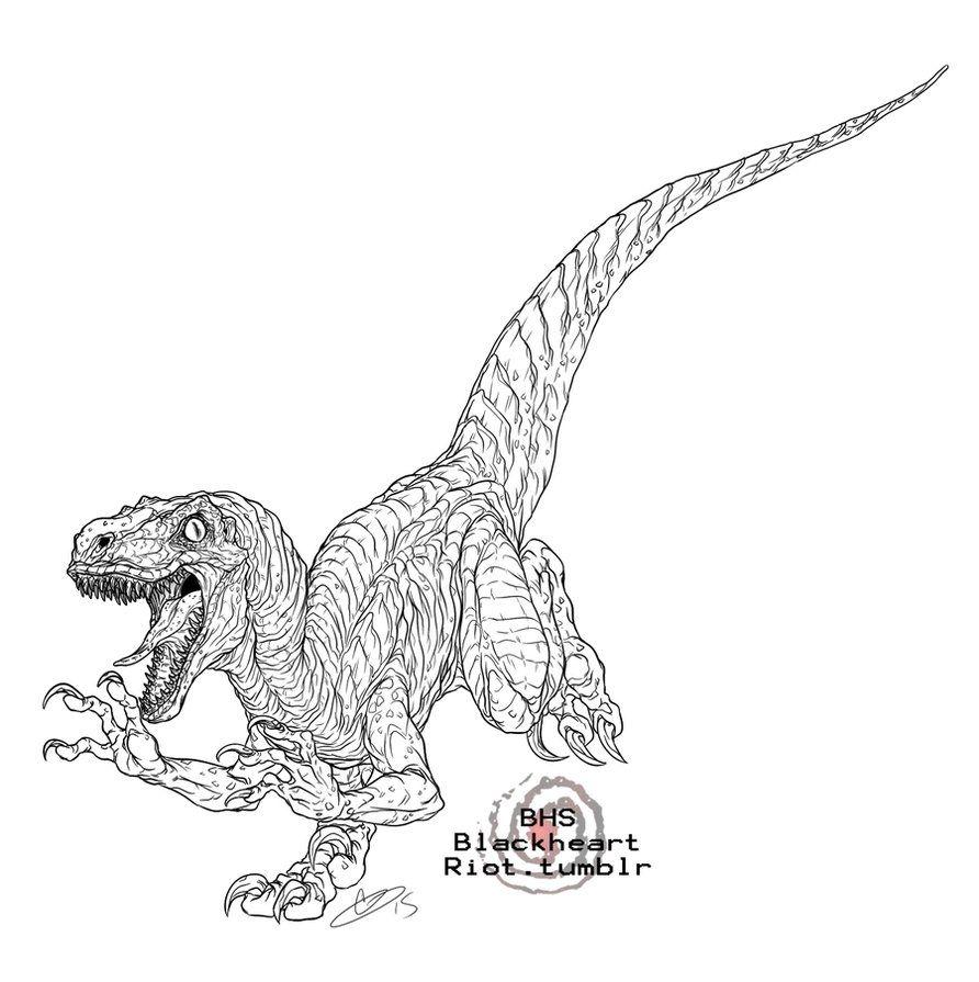 Coloriage Dinosaure Dessin Velociraptor A Imprimer En 2021 Coloriage Dinosaure Dessin Dinosaure Dinosaure