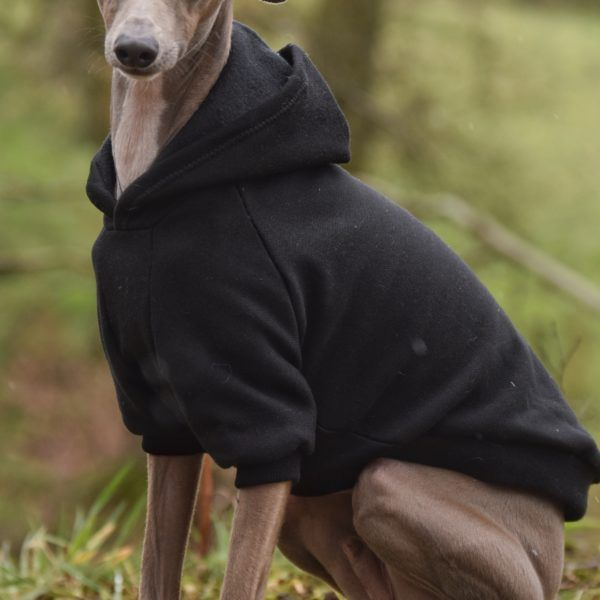 Pin On Italian Greyhound Clothing