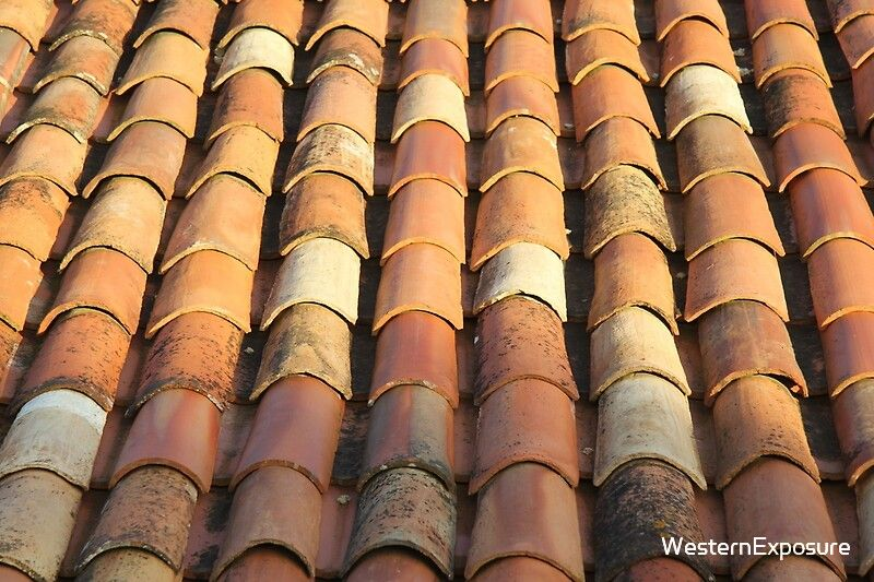 Portuguese Roof Tiles Art Print By Westernexposure In 2020 Roof Tiles Pretty Tiles Tile Art