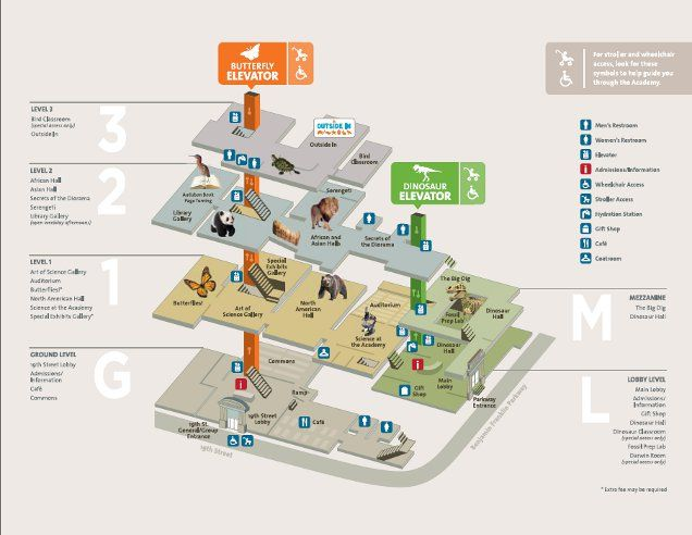 Museum Floor Plan | Academy of Natural Sciences of Drexel University on