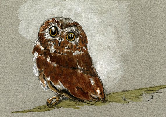 "Little owl bird night cute nature study wildlife color animal 8x5"" 21x15 cm art original Watercolor painting by Juan bosco"