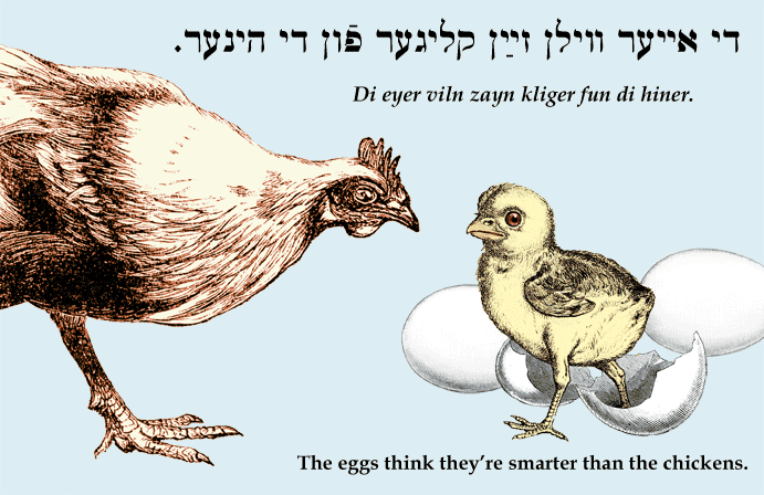 Famous Quotes About Chickens: Yiddish: The Eggs Think They're Smarter Than The Chickens
