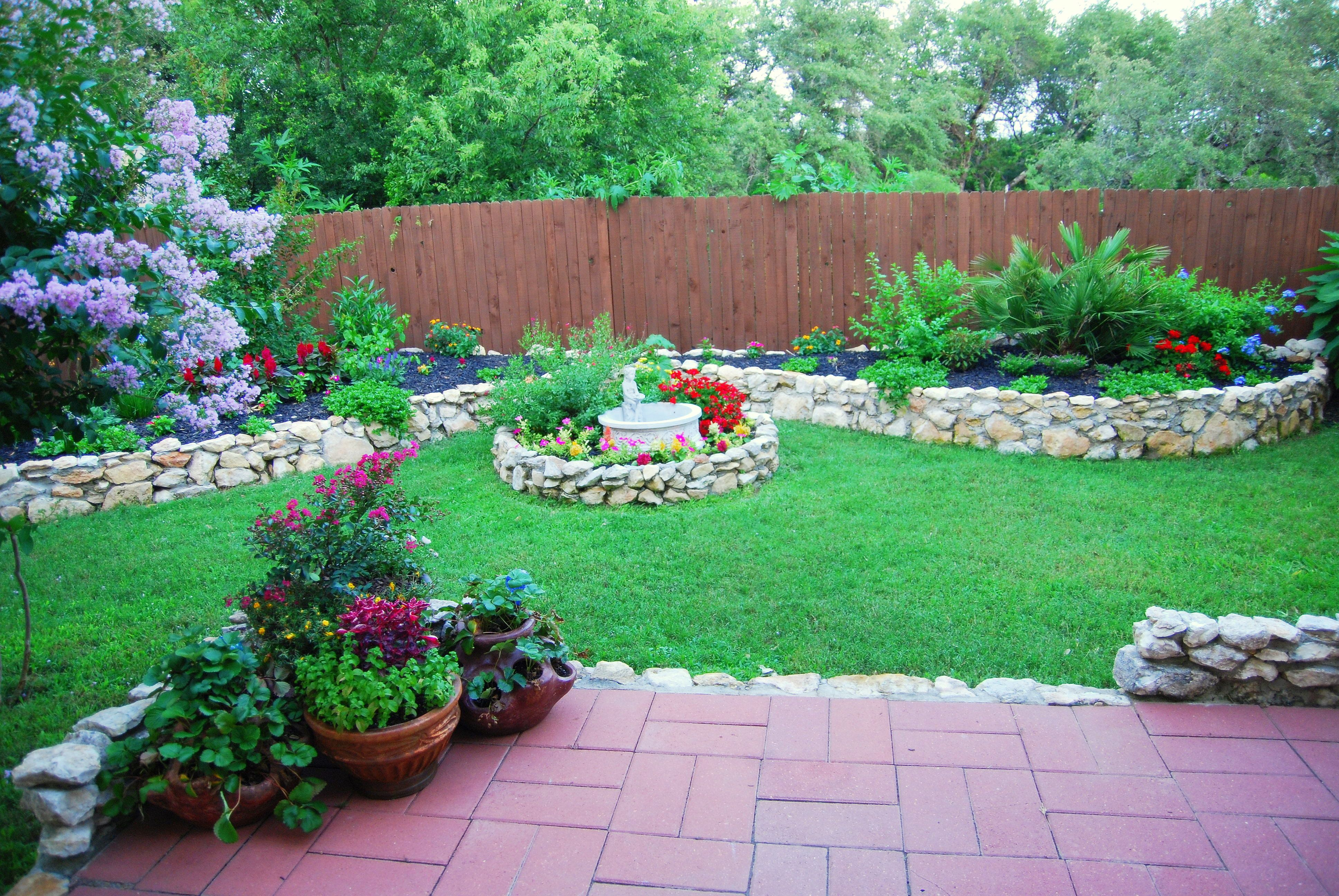 My yard in San Antonio | Garden yard ideas, Plants, Garden