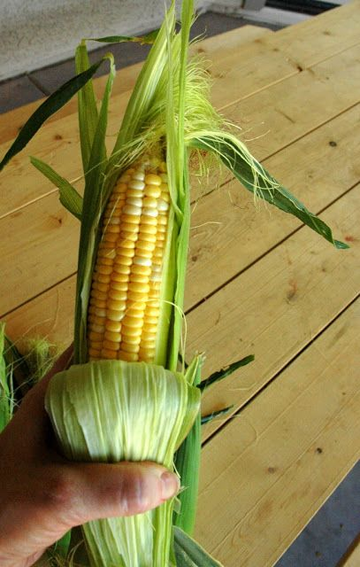 Oven Roasted Corn On The Cob Leave In The Oven For 1 Hour Then Let It Rest Til You Re Ready To Serve I Put A Bow Roasted Corn Growing Sweet Corn