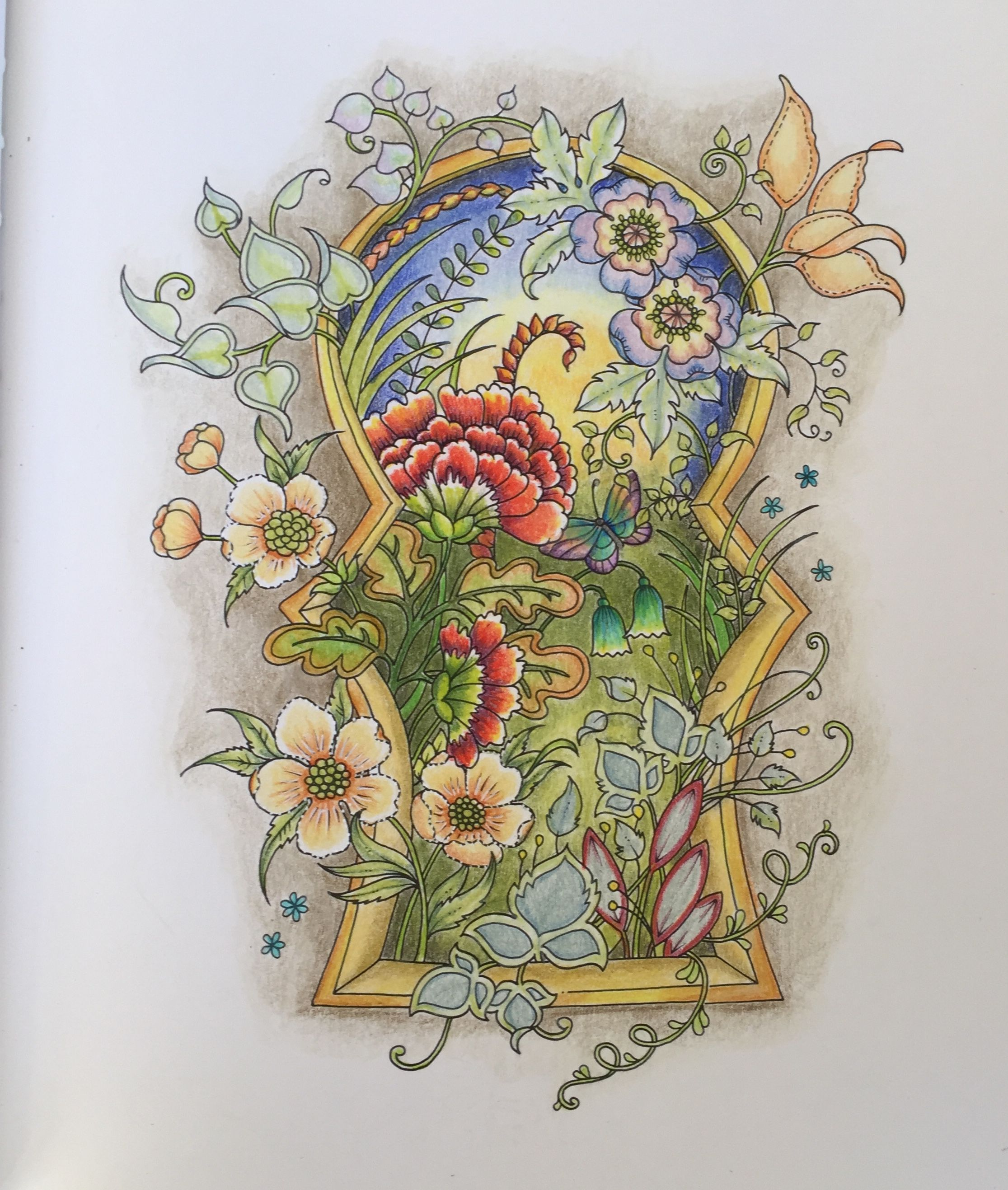 Johanna Basford Coloring Book Art Therapy Books Adult Colored Pencils Zentangles Color Combinations Clip Butterflies