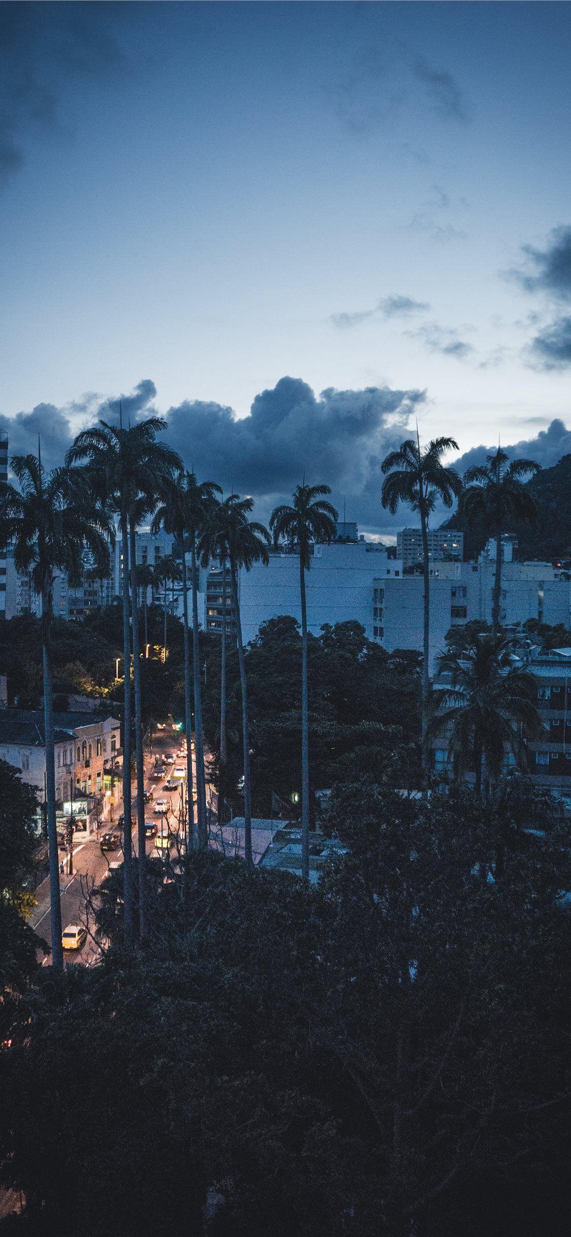 Sunset In Rio Stateofriodejaneiro Brazil Palmtree Unsplash Androidwallpaper Andr Sunset Iphone Wallpaper Iphone Wallpaper Unsplash Best Iphone Wallpapers