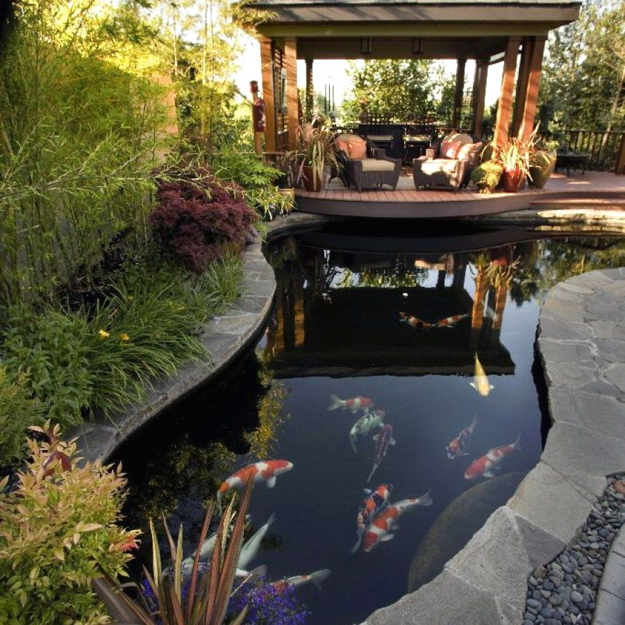29 Beautiful Koi Pond Plans You Can Build To Complete Your