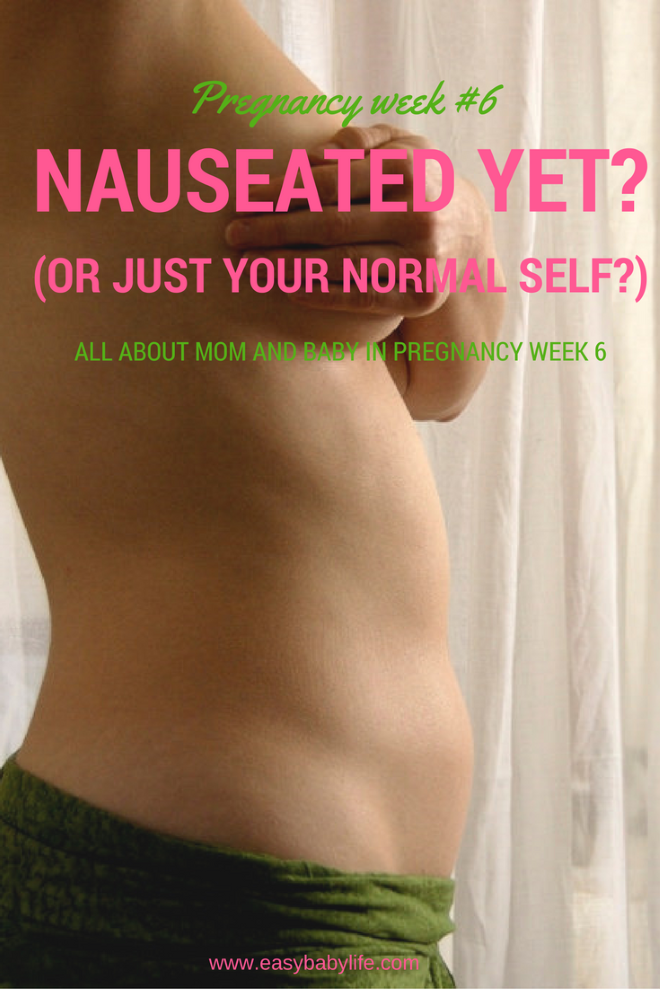 All about being 6 Weeks Pregnant – Are You Nauseated? (Or