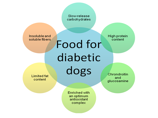 There Are Specifically Formulated Diets For Diabetic Dogs Find Out