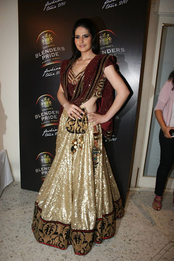 Zarine Khan in an Indian Outfit(異國風)