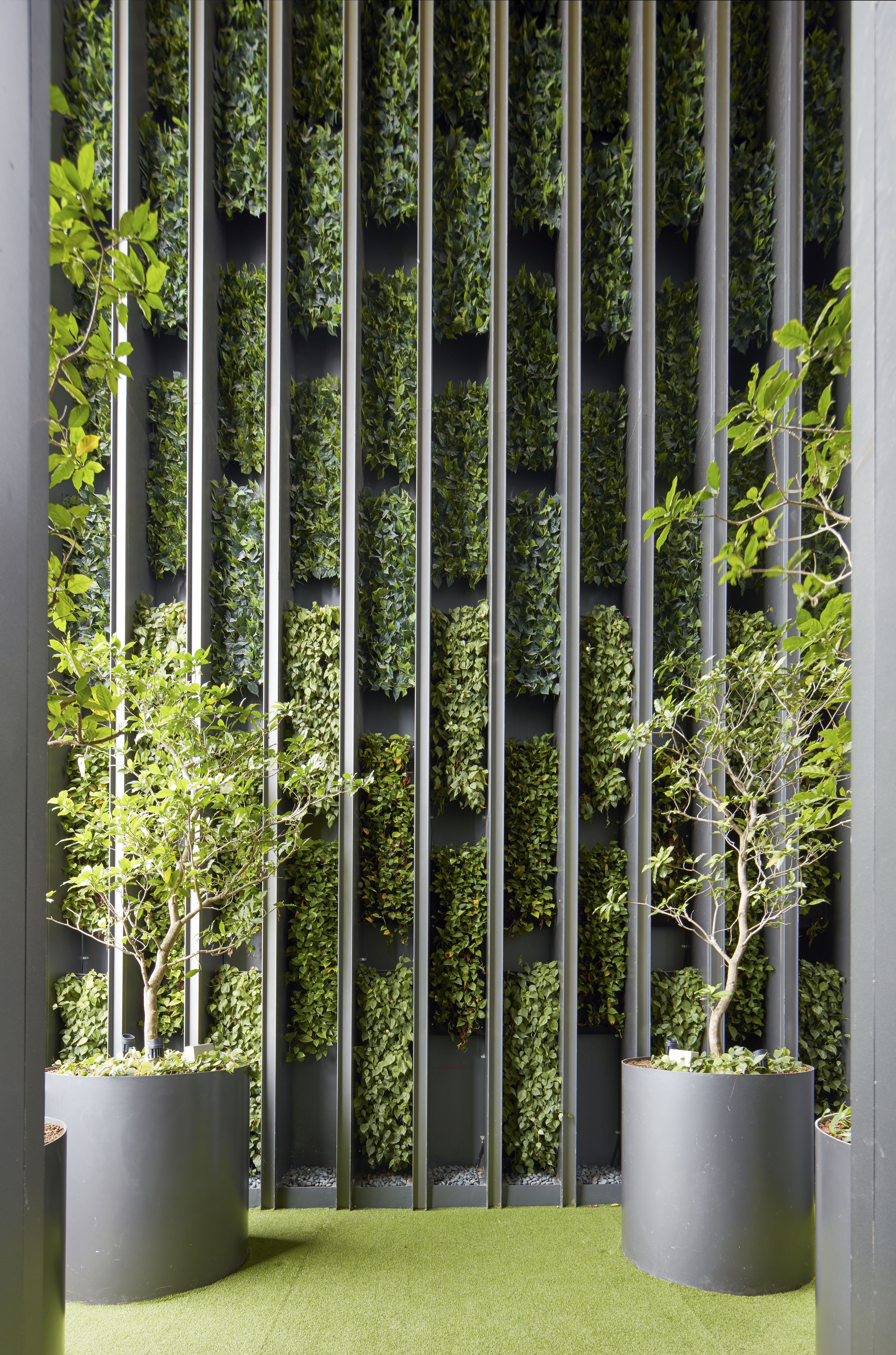 Pin by Benjarat Boonshoo on green wall  Vertical garden design