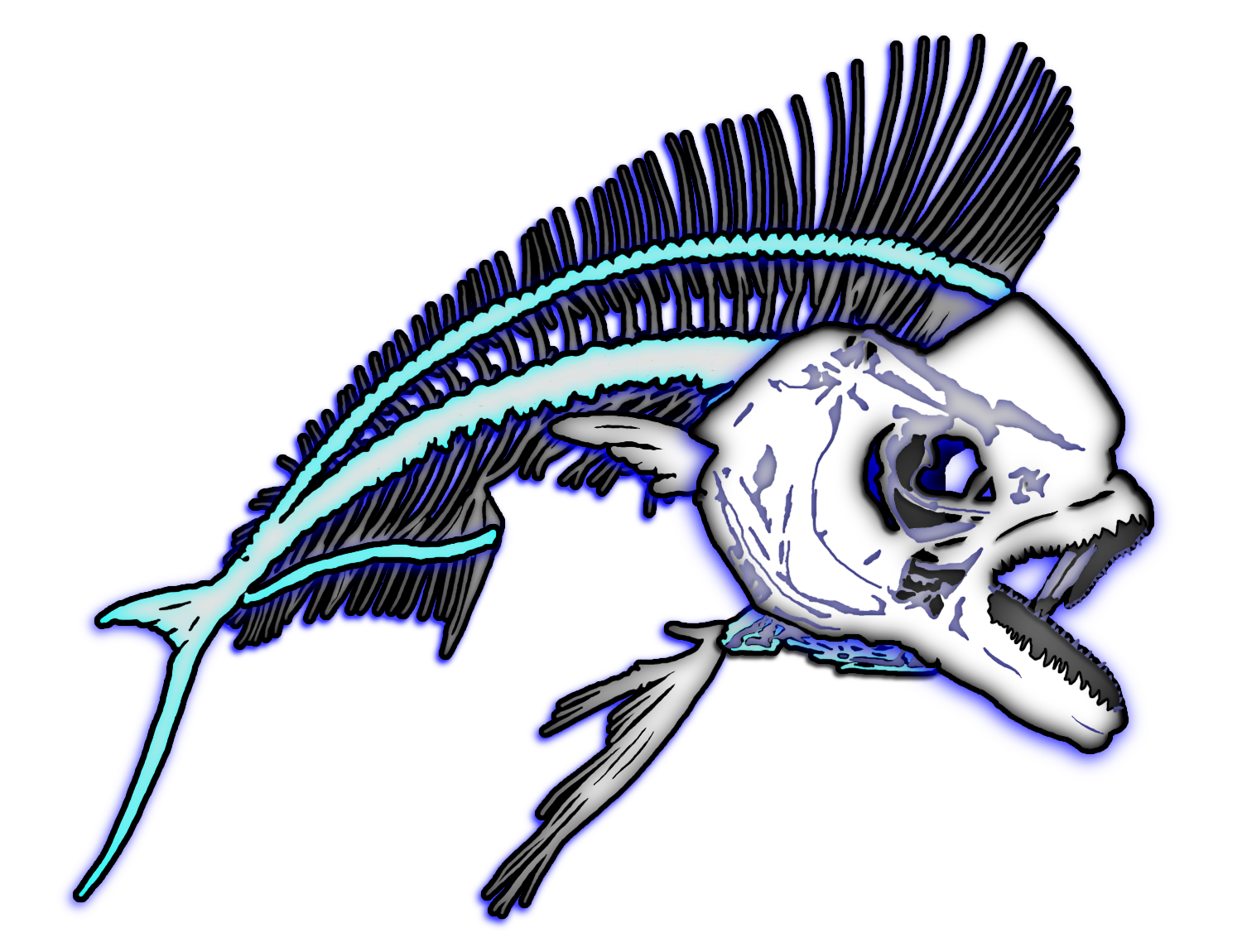 Mahi Mahi Fish Bones Skeleton Graphic Art Digitized From Popular Photo Transparent For Auto Window Decal Or T Shirt Apparel By Skeleton Decals Graphic Art Art