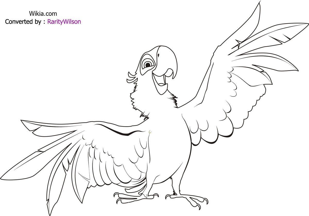 Rio Color Desenhos Para Colorir Imagixs Bird Coloring Pages Coloring Pages Drawings
