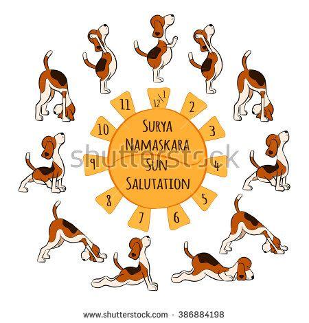 Isolated Cartoon Funny Dog Doing Yoga Position Of Surya Namaskara