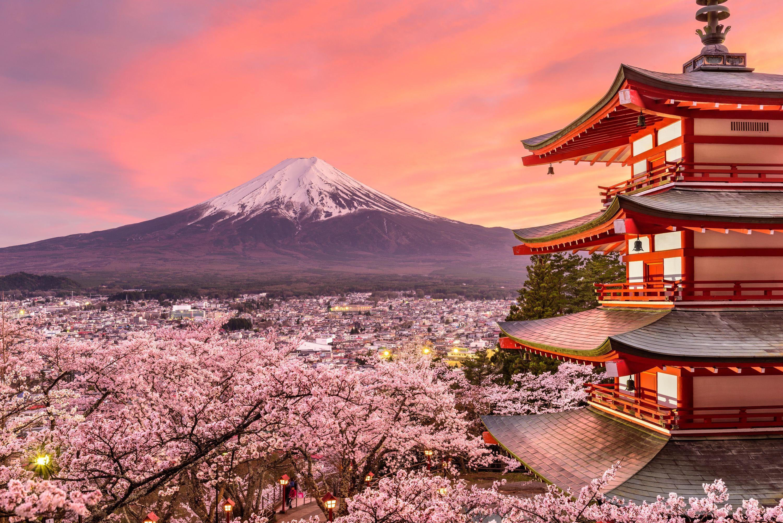 Mount Fuji Sunset Cherry Blossom Spring Pagoda 16811 1 Jpg Japan Landscape Japan Spring Japanese Travel