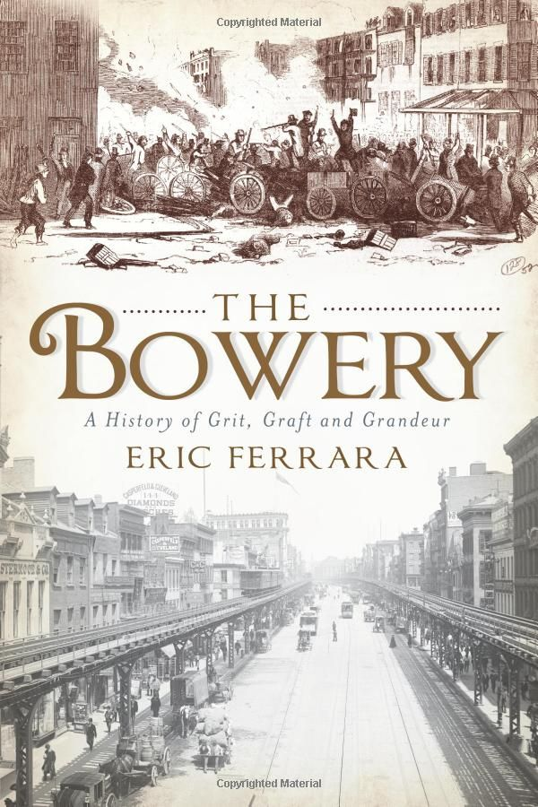 The Bowery A History Of Grit Graft And Grandeur Ny Eric Ferrara