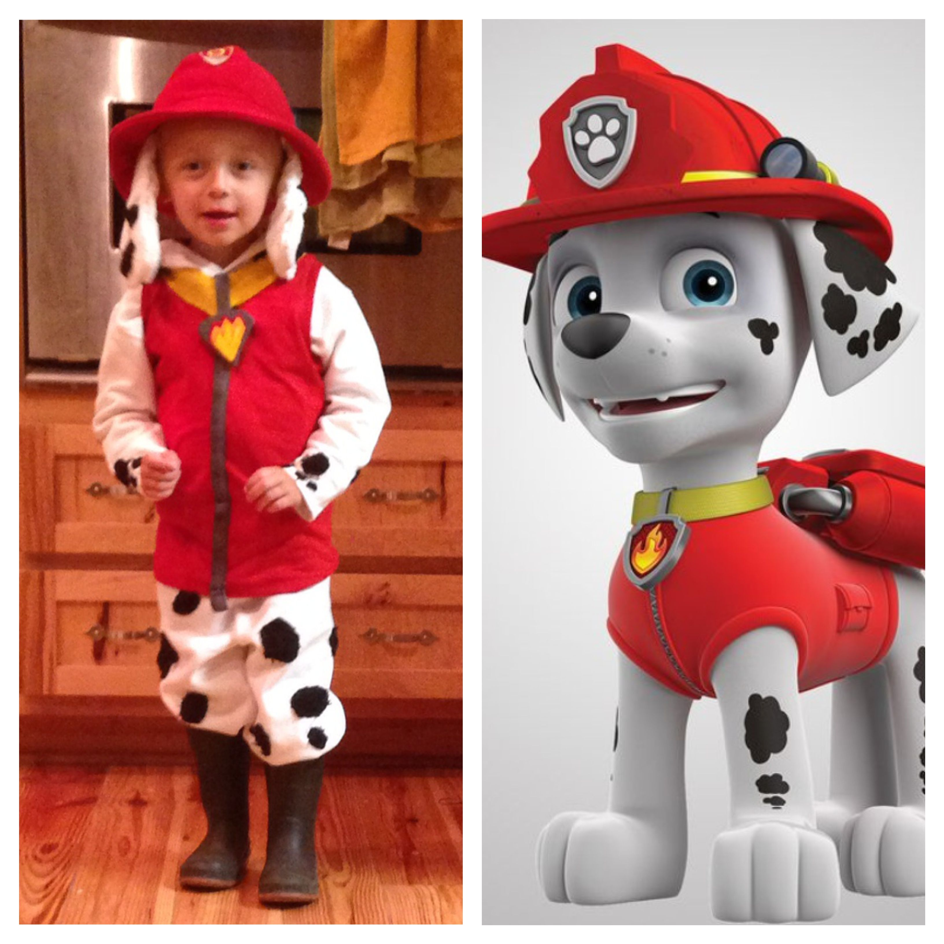 marshall from paw patrol halloween costume for little ones pinterest pat patrouille. Black Bedroom Furniture Sets. Home Design Ideas